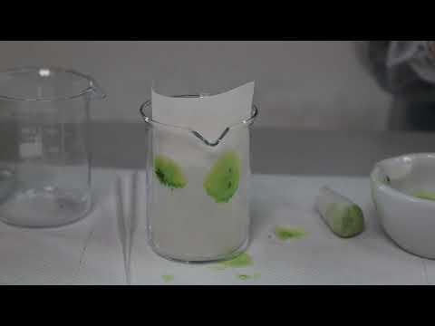 immagine di anteprima del video: Piccolo Laboratorio di Latino